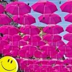Най-позитивни снимки от България за 2013 година…