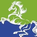 Годината на Синия дървен кон