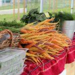От сезонни плодове и зеленчуци до био салати и мед на фермерския пазар на Lidl